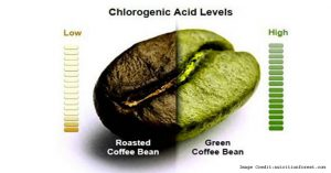 Valentus Coffee Side Effects Chlorogenic Acid Health
